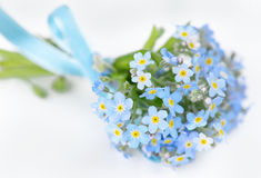 Forget-me-not. Small bouquet of blue forget-me-not, tied a blue ribbon, on a light background Stock Photography