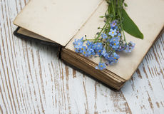 Forget-me-nots flowers and old book Royalty Free Stock Images