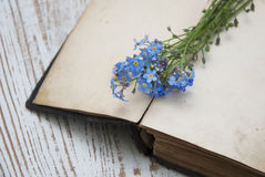 Forget-me-nots flowers and old book Royalty Free Stock Photo