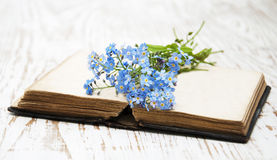 Forget-me-nots flowers and old book Stock Photography