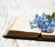 Forget-me-nots flowers and old book Stock Images