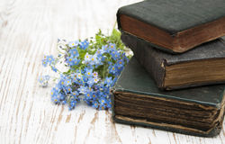 Forget-me-nots flowers and old books Stock Image