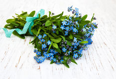 Forget-me-nots flowers Royalty Free Stock Photography