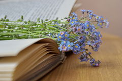 Forget me nots lying on the open book Stock Photos