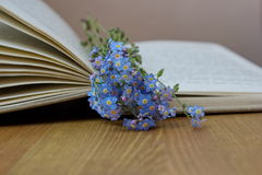 Forget me nots lying on the open book Stock Images
