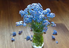 Forget me nots in the vase Stock Photography