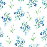Forget-me-nots watercolor seamless vector print Royalty Free Stock Photography