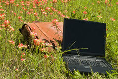 Forget the Work. A large satchel or shoulder bag and a laptop laying in flower peppered grass Stock Photos
