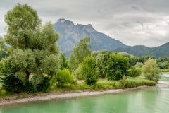 Forggen del lago Fotos de archivo