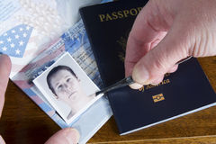 Forging Passport Picture. Hand with tweezers holding id photo over passport as if forging the travel documents Royalty Free Stock Photos