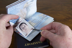 Forging Travel Documents. Hand with tweezers holding id photo over passport as if forging the travel documents Royalty Free Stock Photography