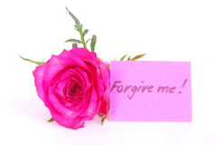 Forgive me concept. A single big pink rose flower with a pink paper note and the written words FORGIVE ME on it. Image isolated on white studio background Royalty Free Stock Photos