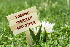 Forgive yourself and other. On wooden sign in garden with white spring flower Royalty Free Stock Photos