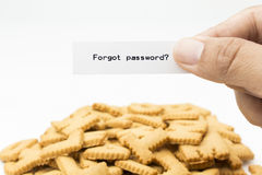 Forgot password. Concept : holding paper forgot password with bread pile of letters Royalty Free Stock Photos