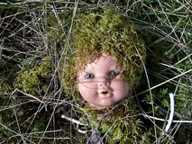 Dolls Head Covered In Moss Royalty Free Stock Images