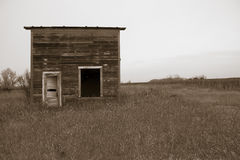 Forgotten. A small shack abandoned in a corn field Royalty Free Stock Photography