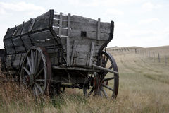 Forgotten. An old wooden wagon on the farm Stock Photography