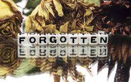 Forgotten. Text message with withered flowers royalty free stock image