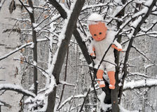 Forgotten, abandoned. In the park, near the road, I saw the doll, still quite well been preserved, which have thrown directly into the branches of trees Stock Images