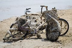 Remains of bicycles at Dead Sea coast  Stock Photo