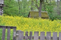 Forgotten cabin 2 Stock Images