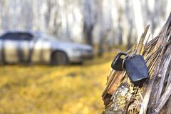 Forgotten car keys on a tree in an autumn forest, a background of a blurred car royalty free stock photography