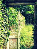 The forgotten doorway. The summer sun shining through a forgotten doorway at Hawarden Castle Royalty Free Stock Photography
