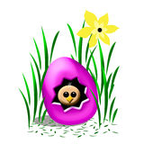 Forgotten Easter egg Stock Photography