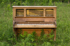 Abandoned Piano Forgotten in a Green Field Royalty Free Stock Photos