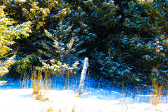 Forgotten Post. This single snowy post is so beautiful as it sits all alone forgotten about Royalty Free Stock Photography