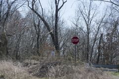 Forgotten roadway stop sign. An abandoned and forgotten roadway through the forest.  Nature is in the process of reclaiming tree concrete slabs that formed the Stock Photo