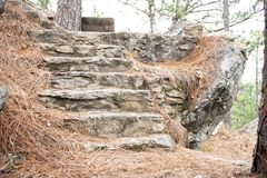 Forgotten Staircase. Set of forgotten and crumbling stairs leading up and away, appearing lost and forgotten in the wilderness royalty free stock images