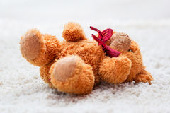 Forgotten teddy bear Stock Image