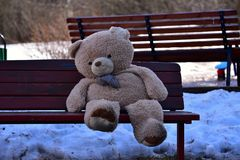Forgotten toy-bear on the bench. Royalty Free Stock Images