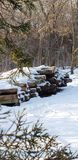 Snowy timbers royalty free stock photography
