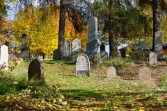Forgotten and unkempt Jewish cemetery Royalty Free Stock Photo