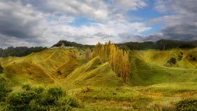 Forgotten World, Taranaki, New Zealand Stock Photos