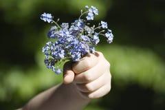 Forgret-je-pas fleurs (myosotis) Photos stock