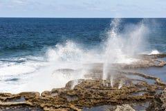 Fori del colpo nel Tonga, Pacifico Meridionale Fotografie Stock Libere da Diritti