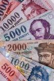 forint ουγγρικά Στοκ Εικόνα