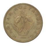 Forint 20 Imagen de archivo libre de regalías