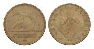Forint 20 Royaltyfria Foton