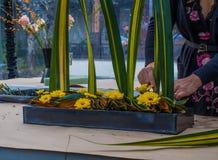 Forist arrangeant des flowewrs et des feuilles dans le récipient en métal Image stock