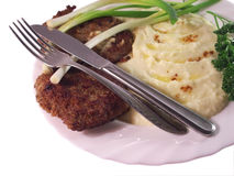 Free Fork And Knife On A Plate Stock Photography - 6356002