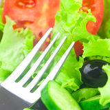 Fork,black olive,lettuce, tomato, cucumber and pepper Royalty Free Stock Images