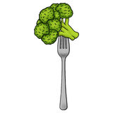 Broccoli on a fork illustration. Isolated broccoli on a fork illustration Stock Photo