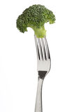 Fork with a broccoli isolated Stock Images