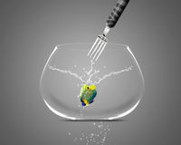 Fork catch angelfish in fishbowl. Angelfish jumping and diving in fishbowl Stock Image