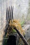 Fork de la echada. Fotos de archivo libres de regalías
