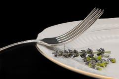Fork en la placa Fotografía de archivo